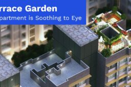 Terrace Garden in Apartments is soothing to Eye